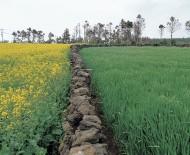 Zwrot podatku akcyzowego rolnikom 2013